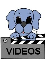 The Dreamee Dog Videos